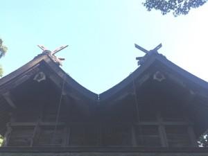 美保神社の比翼造り