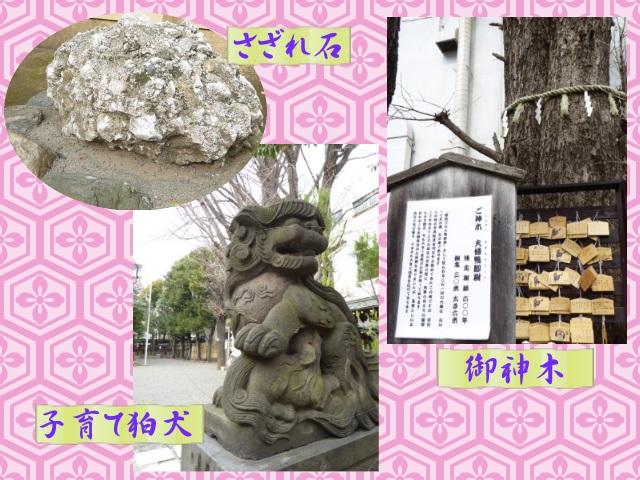 天祖神社の3見どころ