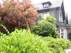 洋館とブラシの木