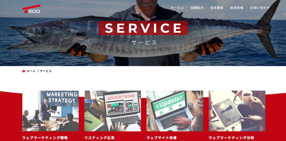 teco site_mini